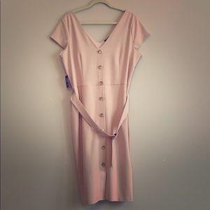 NWT light pink spring midi dress Express
